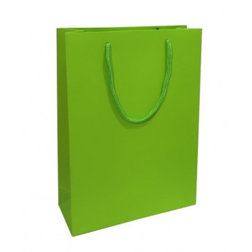 Lime green matt laminated rope handled gift bag