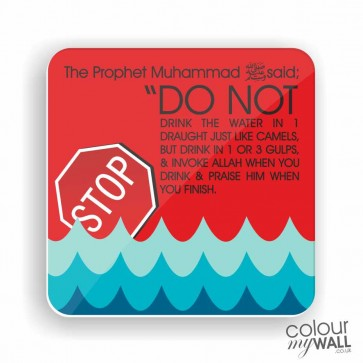 Do not drink the water in 1 draught Quote - Fridge Magnet